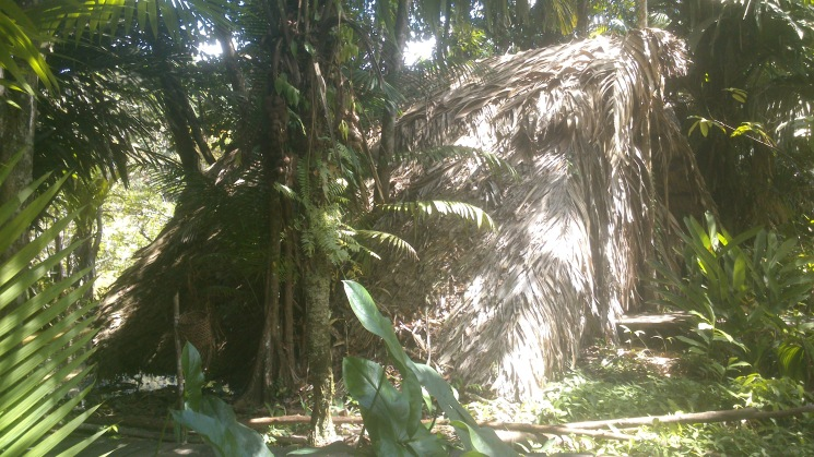 cabaña Orinoco